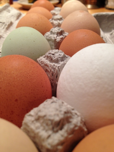 farm fresh eggs from Barnesville, MD
